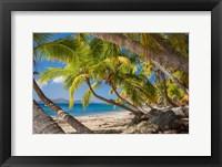 Framed Cooper Island