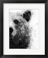 Framed Bear At Attention