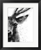 Framed Deer At Attention
