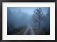 Framed Spring Fog