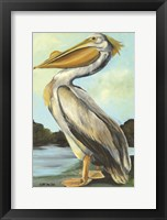 Framed Grand Pelican