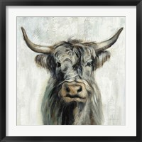 Framed Highland Cow