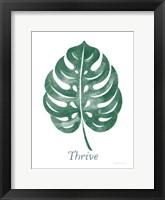 Framed Botanic Inspiration IV