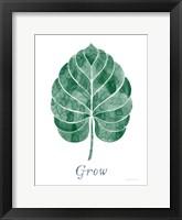 Framed Botanic Inspiration III