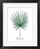 Framed Botanic Inspiration II