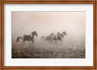 Framed Paint Horses on the Run