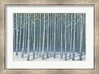 Framed Shimmering Birches