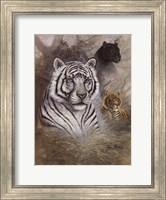 Framed Serengeti Predator