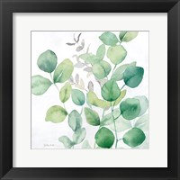 Framed Eucalyptus Leaves I