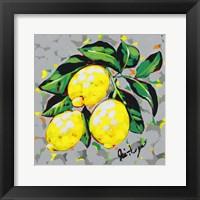 Framed Fruit Sketch Lemons
