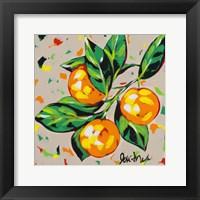 Framed Fruit Sketch Oranges