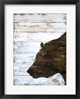 Framed Wild Bear portrait