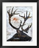 Framed Wild Caribou portrait