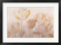 Framed Contemporary Poppies Neutral
