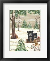 Framed Bears & Bunnies