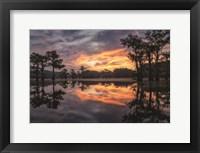 Framed Sunrise in the Swamps