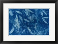 Framed Cyanotype Tropical VII