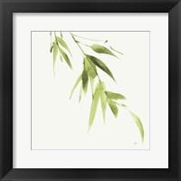Framed Bamboo VI Green