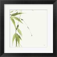 Framed Bamboo V Green