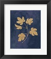Framed Botanical Study III Gold Navy