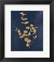 Framed Botanical Study II Gold Navy