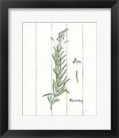 Framed Cottage Herbs I