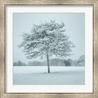 Framed Winter Landscape IV