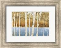 Framed Lakeside Birches