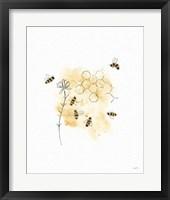 Framed Bees and Botanicals VI