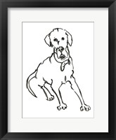 Framed Dog I
