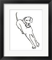 Framed Dog II