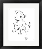 Framed Dog IV