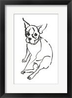 Framed Dog VI
