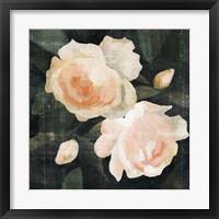 Framed Soft Garden Roses I