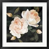 Framed Soft Garden Roses II