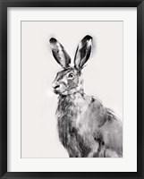 Framed Wild Hare I