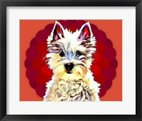 Framed Pop Dog II