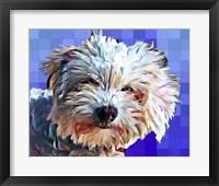 Framed Pop Dog V