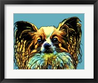 Framed Pop Dog VI