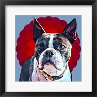 Framed Pop Dog VII
