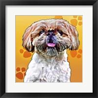 Framed Pop Dog VIII