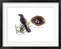 Framed Bird & Nest Study I