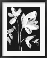 Framed White Whimsical Flowers II