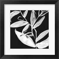 Framed Quirky White Leaves I