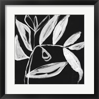 Framed Quirky White Leaves II