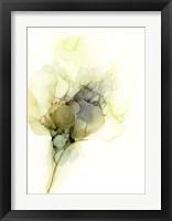 Framed Fluid Bloom I