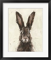 Framed European Hare I