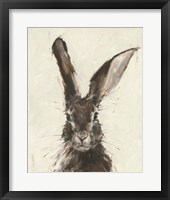 Framed European Hare II