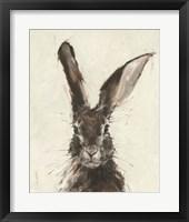 Framed European Hare II