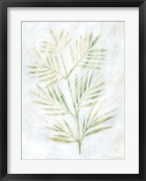 Framed Breezy Fronds III